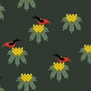 Iiwi  Organic fabric by Charley Harper for Birch Fabrics sold by Online Canadian Fabric Store Woven Modern Fabric Gallery
