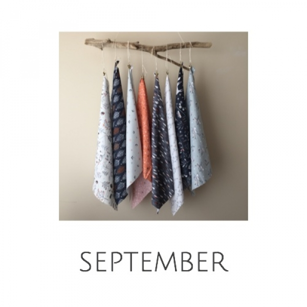 monthly fabric subscription from Canadian Online store Woven Modern Fabric Gallery