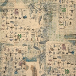 Entomology by Tim Holtz sold by Online Canadian Fabric Store Woven Modern Fabric Gallery