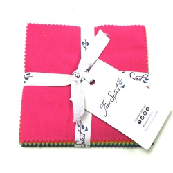 """Tula Pink Solids 5"""" Cham Pack sold by Online Canadian Fabric Store Woven Modern Fabric Gallery"""
